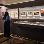 expo-gratuite-a-paris-hotel-de-ville-simone-veil