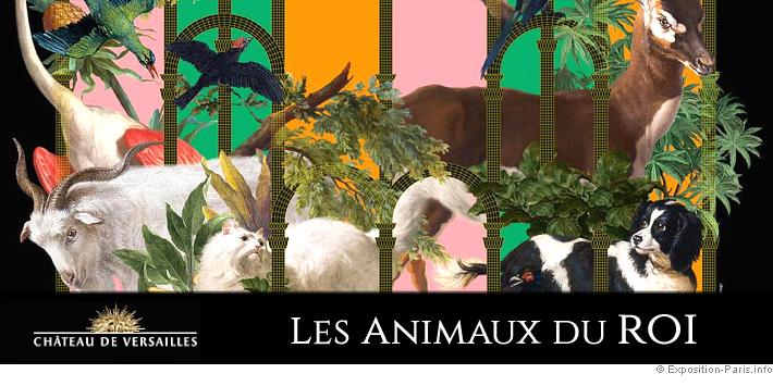 expo-paris-les-animaux-du-roi-au-chateau-de-versailles