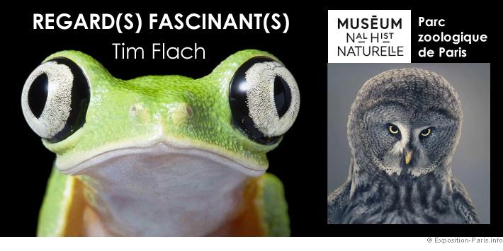 expo-photo-paris-regards-fascinants-d-animaux-tim-flach-parc-zoologique-de-paris